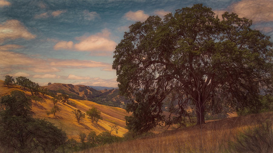 Landscape Photograph - The Golden State by Laura Macky