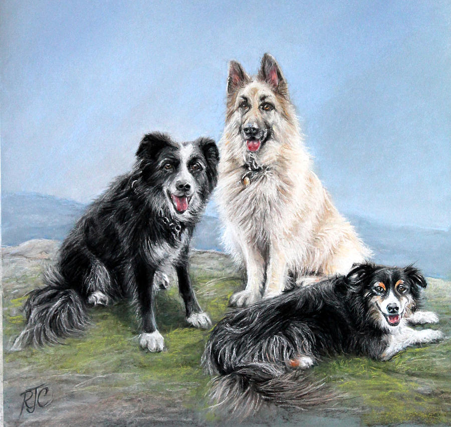 The Good Companions by Rosemary Colyer