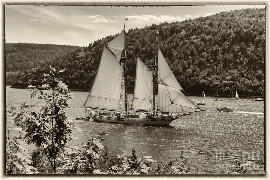 The Good Old Ship Photograph