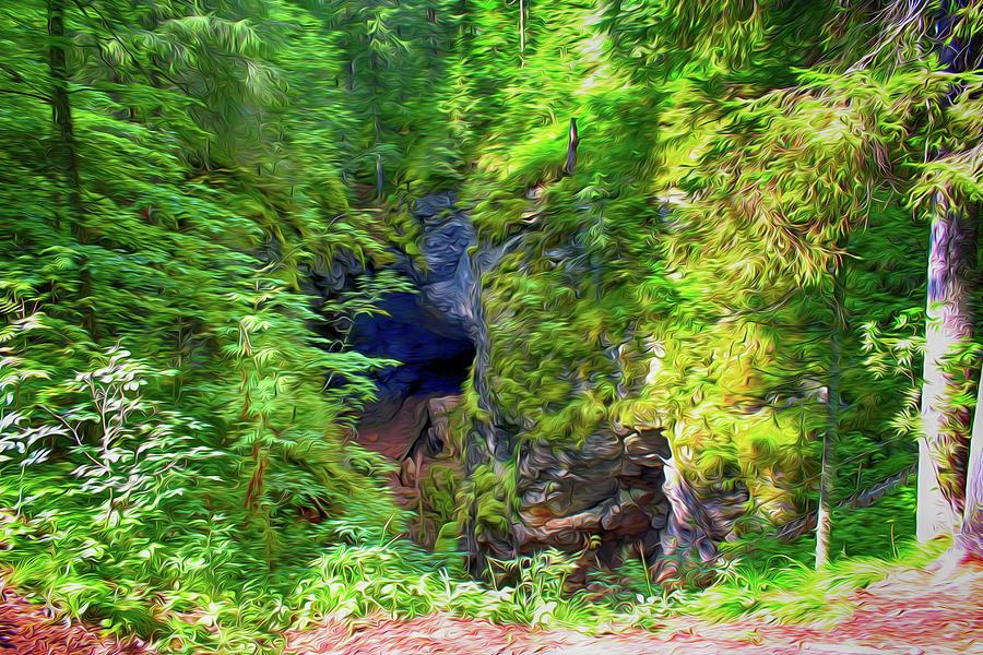 Nature Digital Art - The Gorge In The Wood by Tatiana Tyumeneva