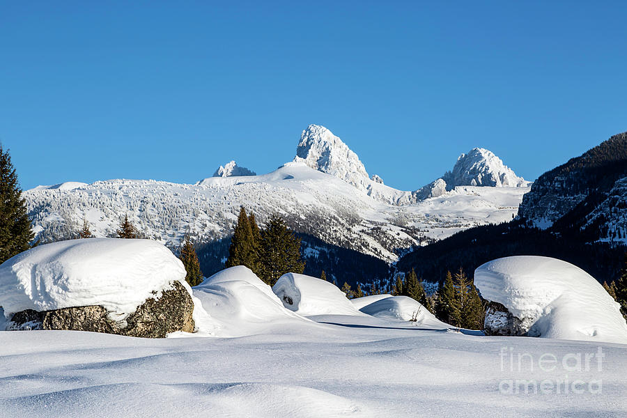 Grand Tetons Photograph - The  Grand Tetons From Alta Wyoming by Daryl L Hunter