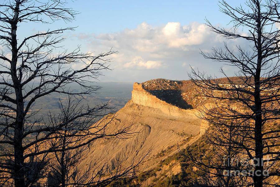 Mesa Photograph - The Great Mesa by David Lee Thompson