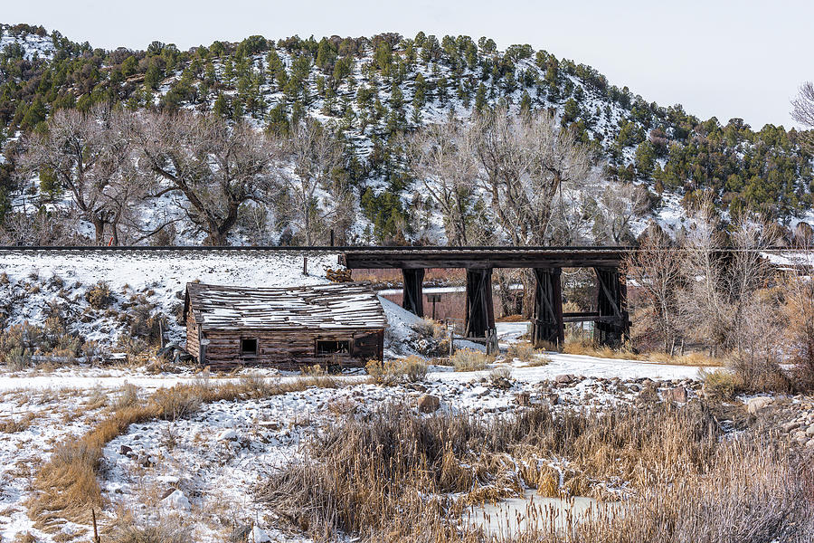 Brush Photograph - The great railroad by Bud Bartnik