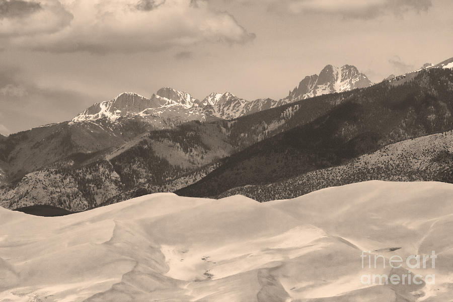 Colorado Photograph - The Great Sand Dunes Sepia Print 45 by James BO  Insogna
