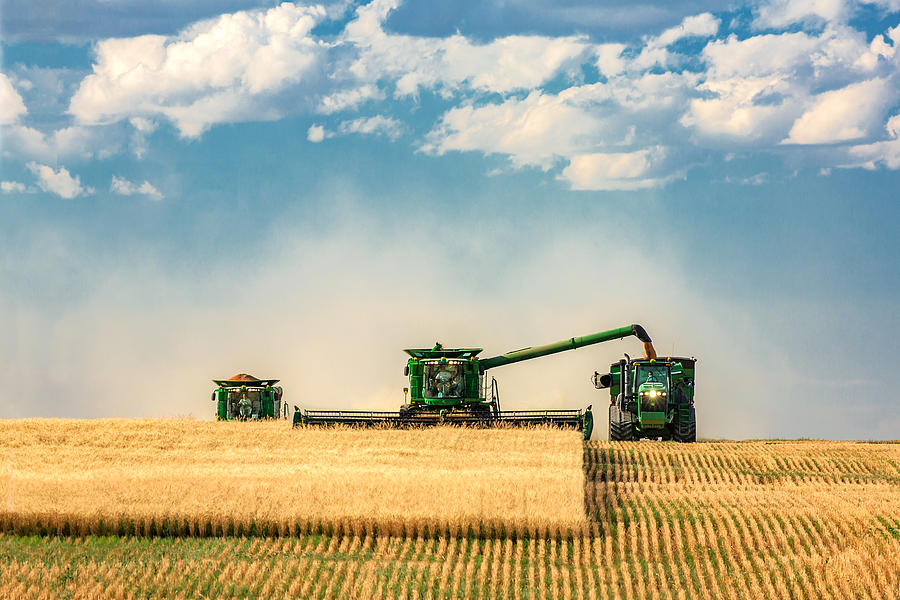 Harvester Photograph - The Green Machines by Todd Klassy