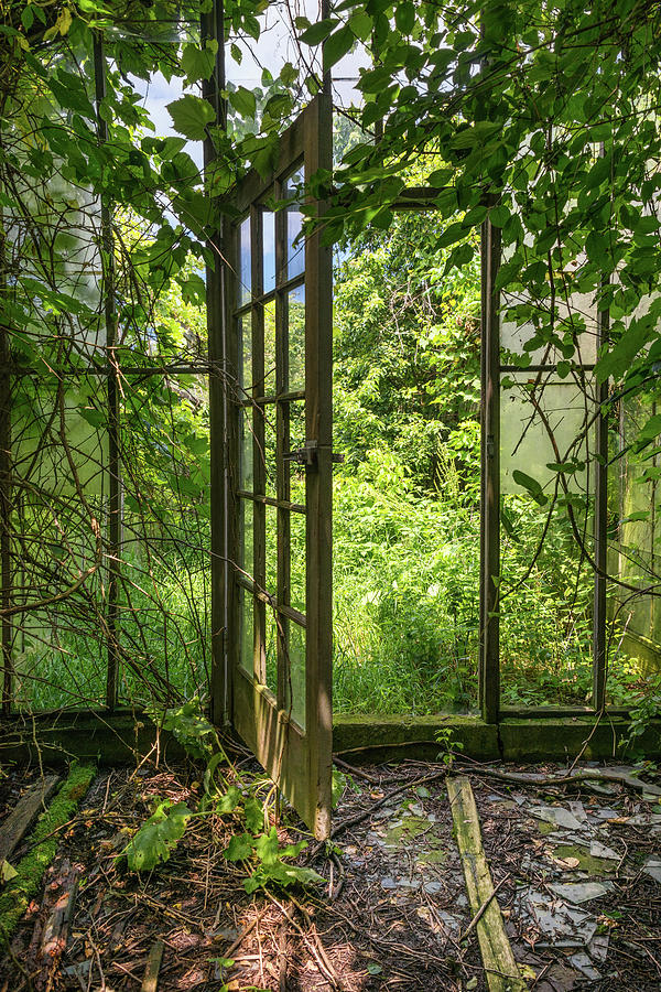 The Greenhouse Door by Lindy Grasser