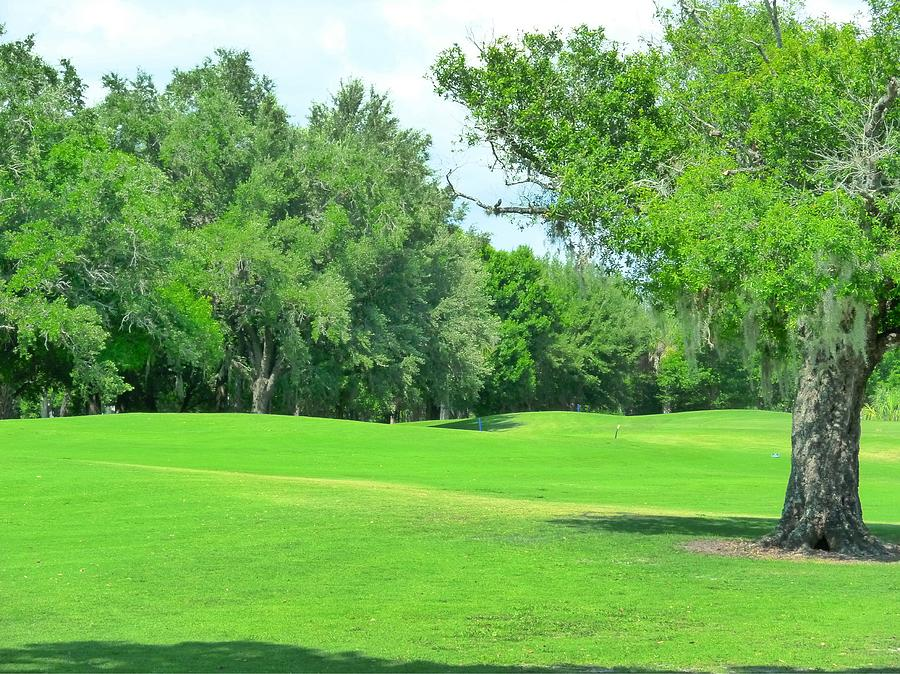 Golf Photograph - The Greens Call by Florene Welebny
