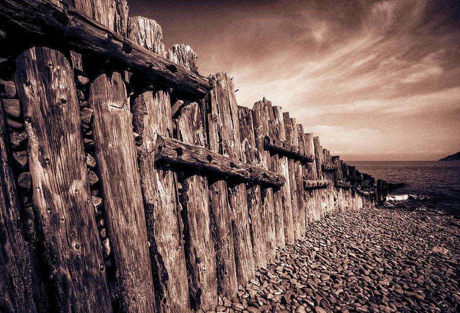 Sea Photograph - The Groynes At Porlock Weir In Sepia Tones. by Paul Cullen