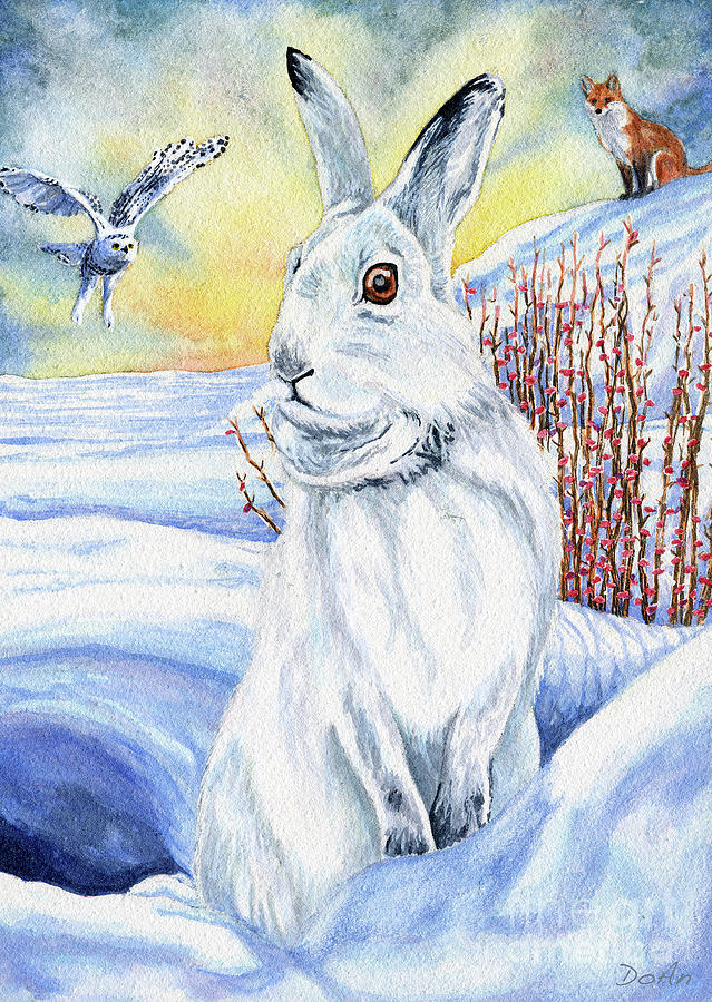 The Hare Fear Creativity and Rebirth by Antony Galbraith