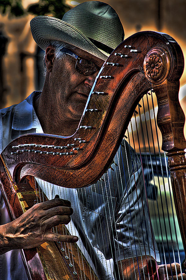 Harp Photograph - The Harp Player by David Patterson