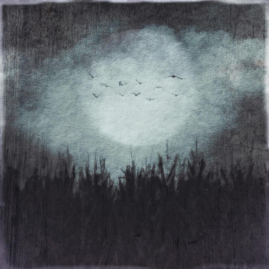the heavy moon by Melissa D Johnston