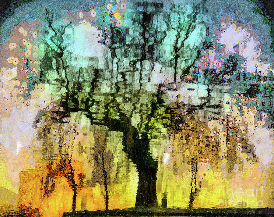 The Hidden Life of Trees and Rainbows  by Daliana Pacuraru