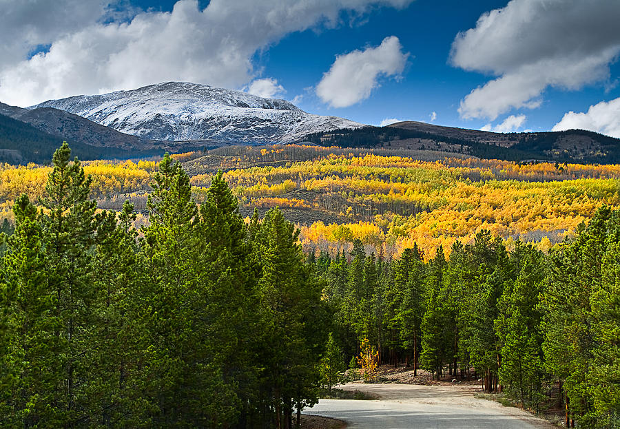 Fall Colors Photograph - The High Road by Tim Reaves
