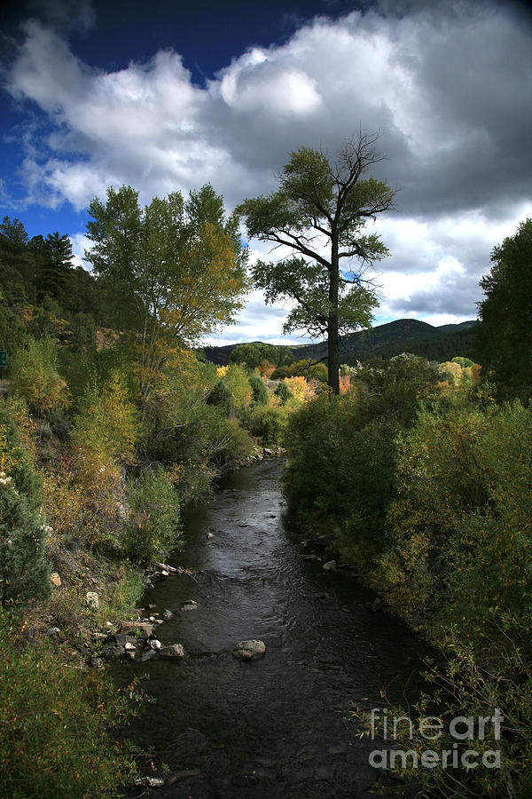 High Road Photograph - The High Road To Taos by Timothy Johnson
