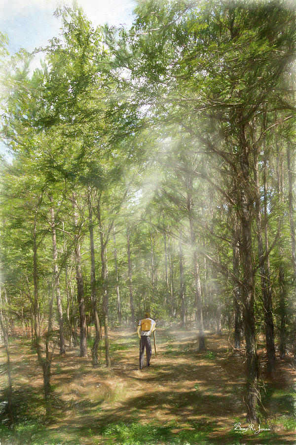 Hiker Digital Art - The Hiker by Barry Jones