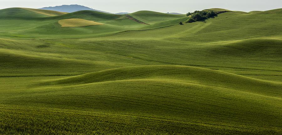 The Hills Speak Photograph