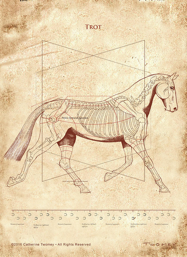 Horse Painting - The Horses Trot Revealed by Catherine Twomey