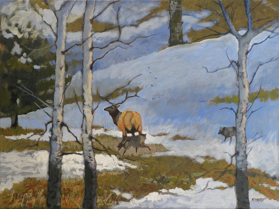 Elk Painting - The Hunt by Robert Bissett