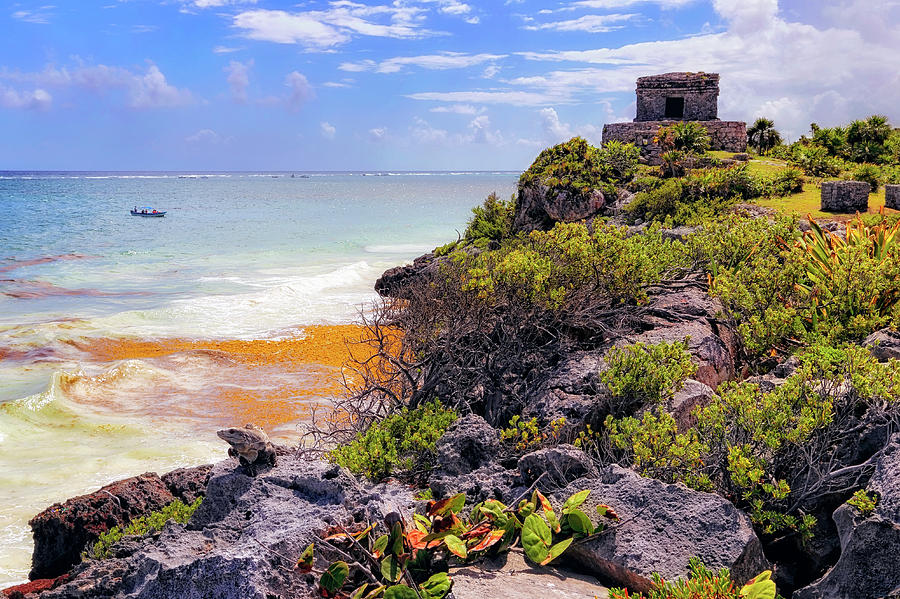The Iguana and the Temple of the God of the Wind - Tulum Mayan Ruins - Mexico by Jason Politte
