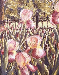 The Iris Patch Painting by Biki Chaplain