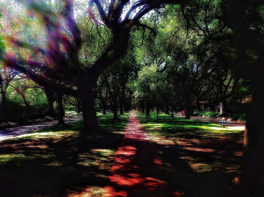 Landscape Photograph - The Journey by Allen Perez
