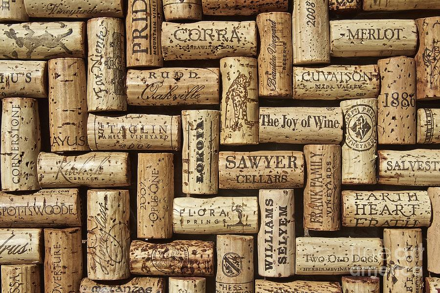 Lux Photograph - The Joy Of Wines by Anthony Jones