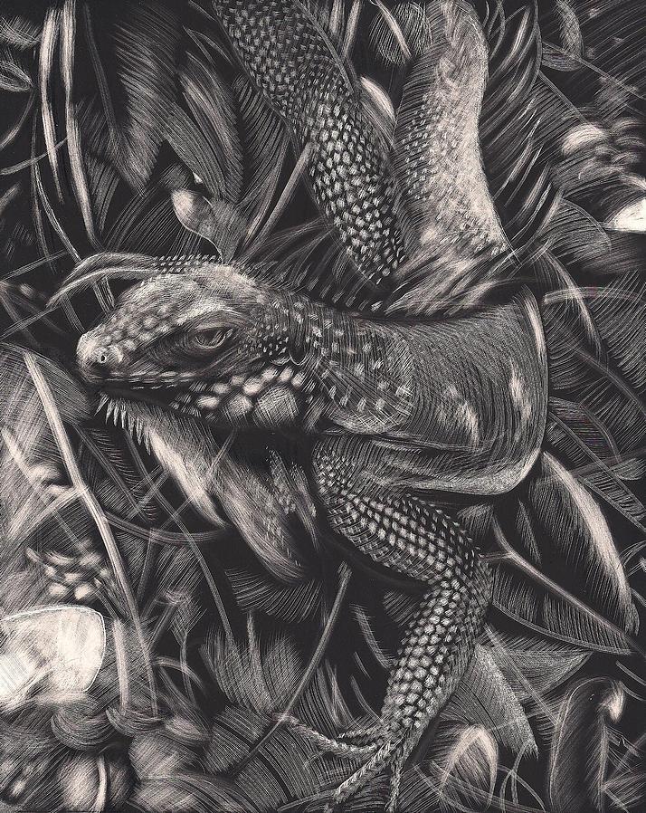 Jungle Drawing - The Jungle by John  Stidham