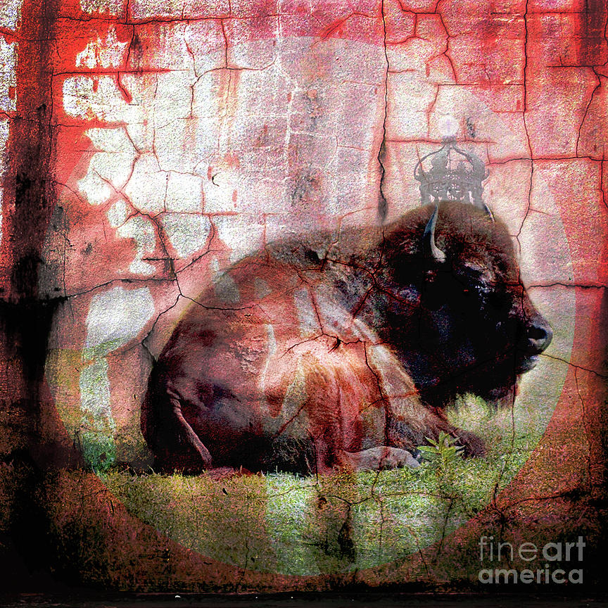 Mixed Media Photograph - The King by Brian Barrer