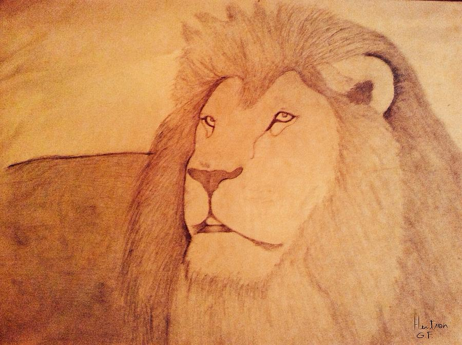 Lion Photograph - The King Lion by Heritson Freire