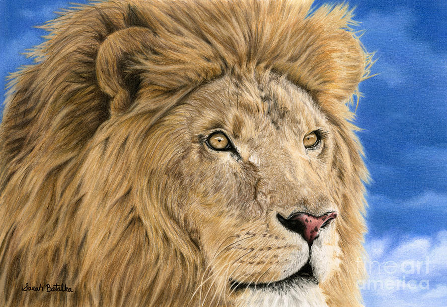 Lion Painting - The King by Sarah Batalka