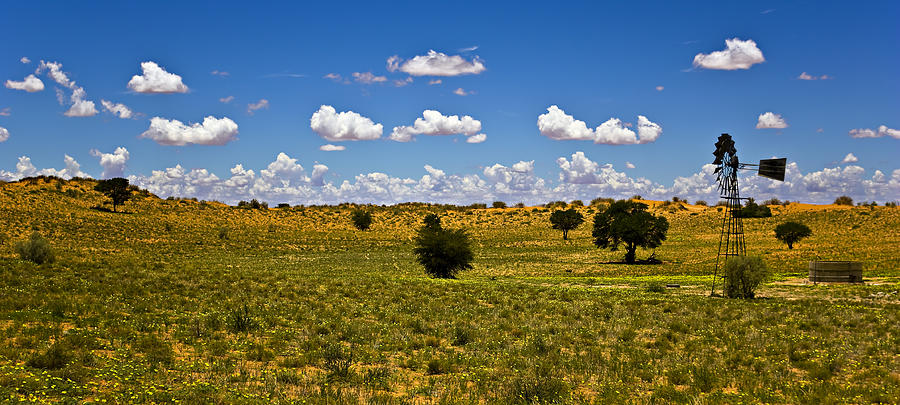 Desert Photograph - The Land Of The Free by Basie Van Zyl