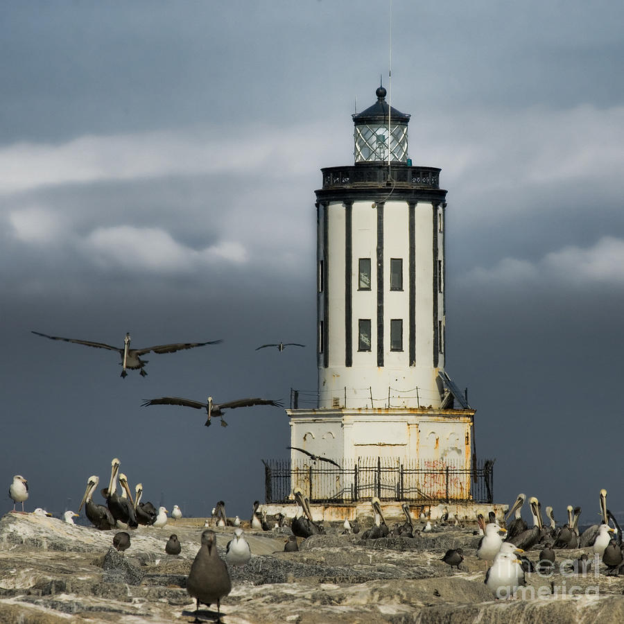 Lighthouse Photograph - The Landing Zone by Nick Carlson