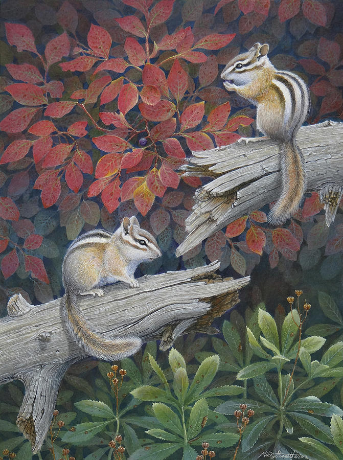 Chipmunk Painting - The Last Huckleberry by Mike Stinnett
