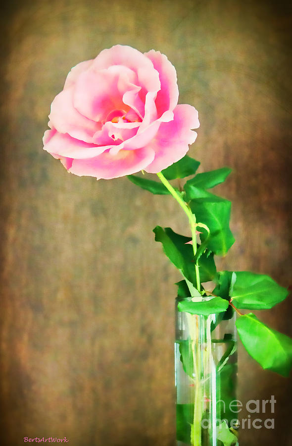 Rose Photograph - The Last One Rose by Roberta Byram