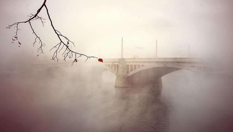Prague Photograph - The Last Red Leaf by Jaroslaw Blaminsky