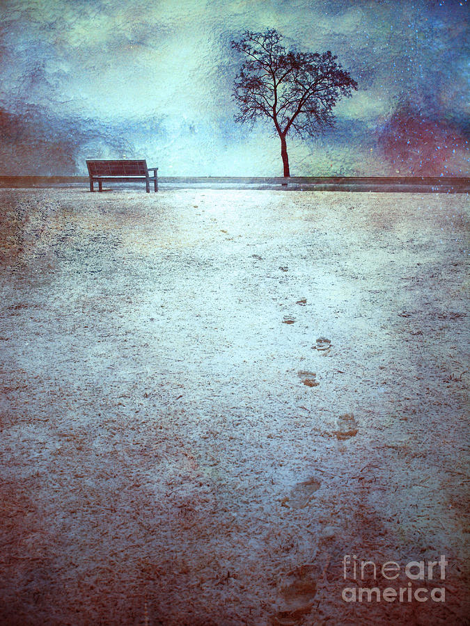 Bench Photograph - The Last Snowfall by Tara Turner