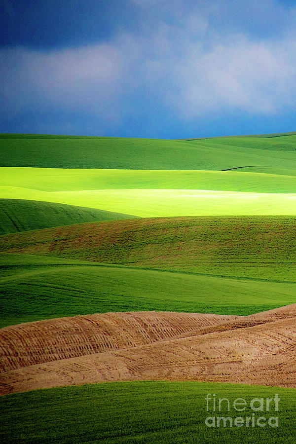 The Layers Of Palouse Photograph