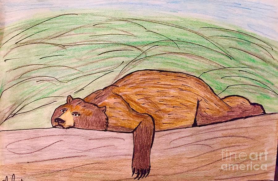 The Lazy Bear Drawing