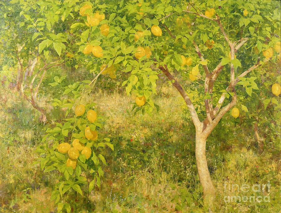 The Painting - The Lemon Tree by Henry Scott Tuke