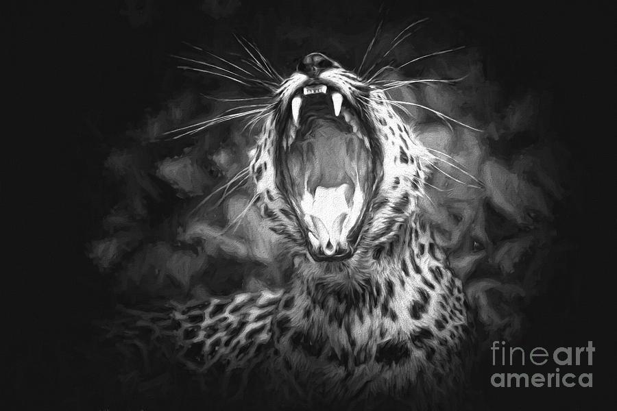 The Leopards Tongue Rolling Roar II Photograph