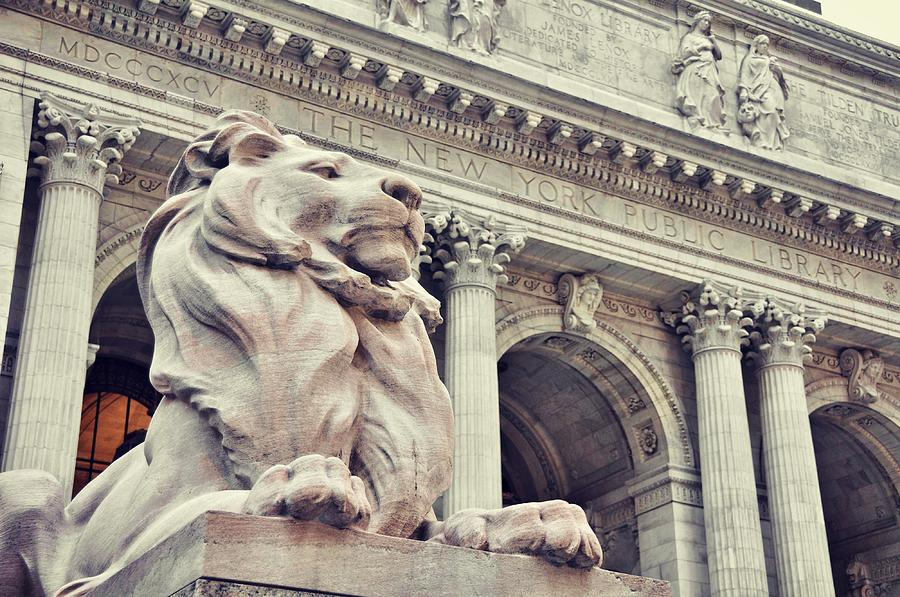 New Photograph - The Library Lions by JAMART Photography
