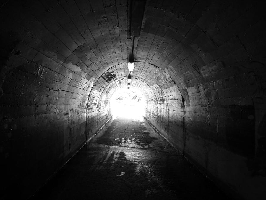 Black Photograph - The Light by Pamela Newcomb