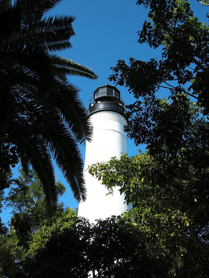 Lighthouse Photograph - The Lighthouse by Audrey Venute