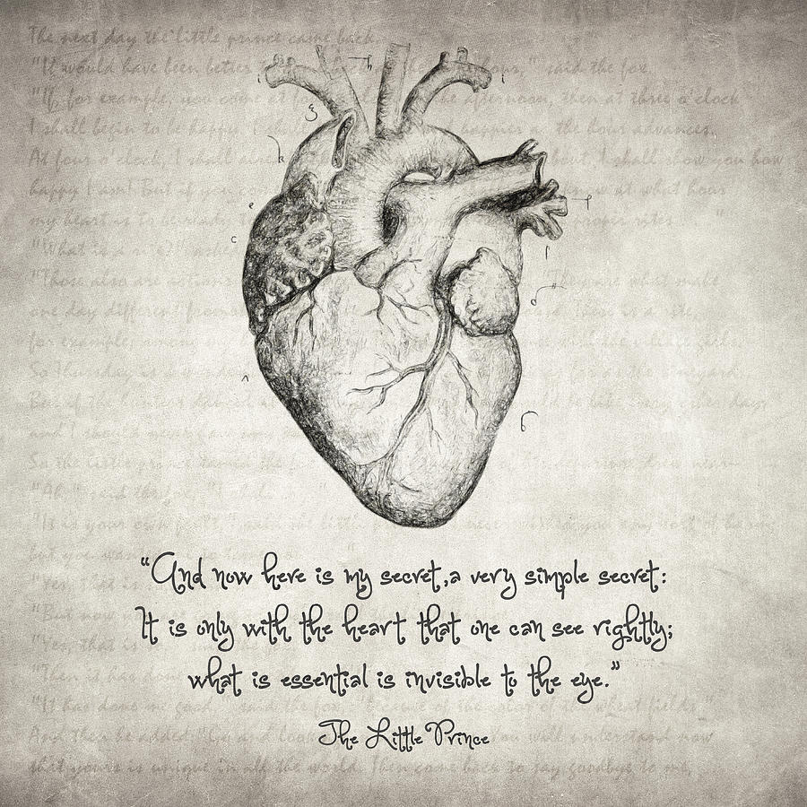 The Little Prince Quote