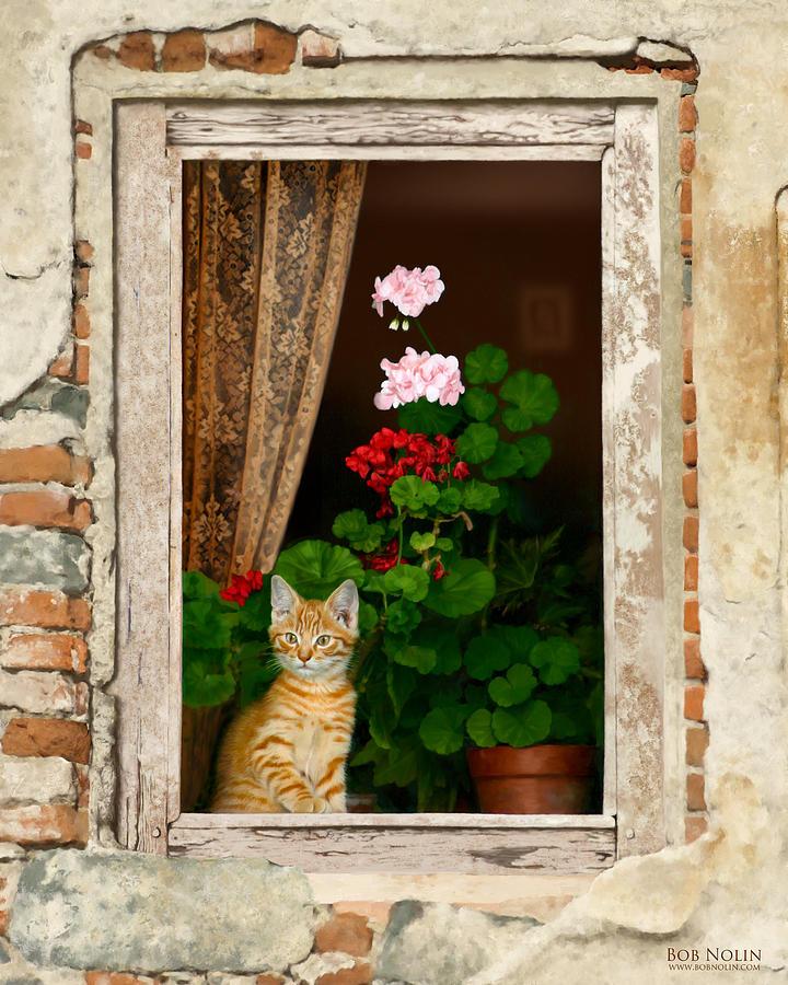 Kitten Digital Art - The Little Tuscan Tiger by Bob Nolin
