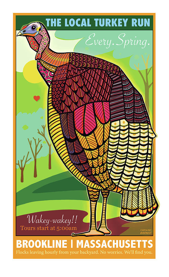 The Local Turkey Run by Caroline Barnes