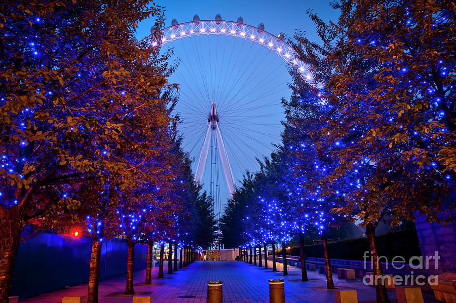 Blue Lights Photograph - The London Eye at Night by Donald Davis