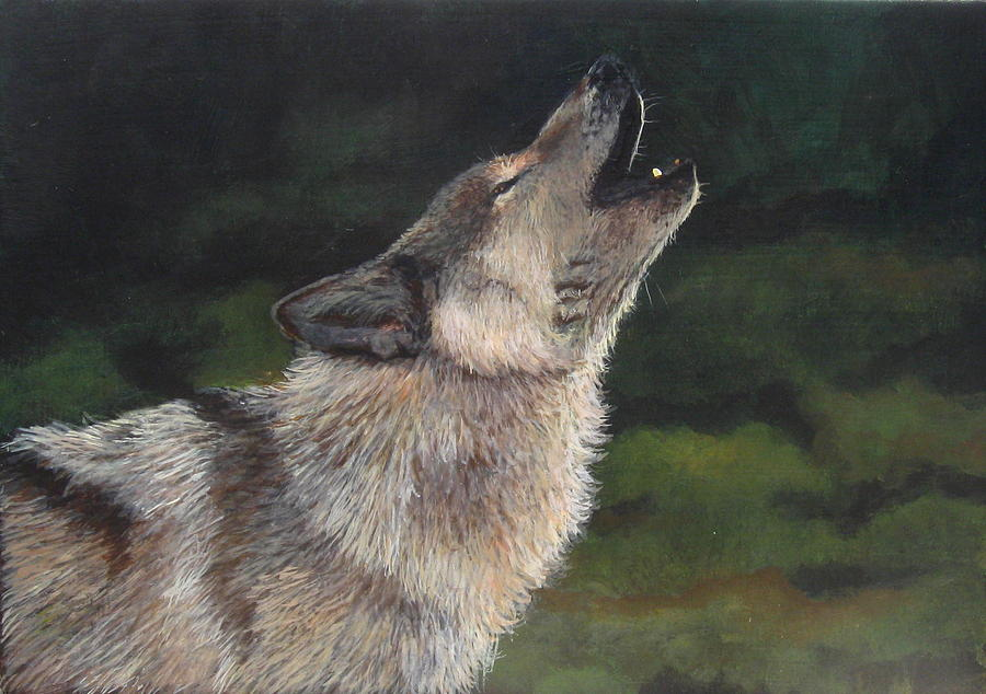 Canis Lupus Painting - The Lone Wolf by Studio Giselle