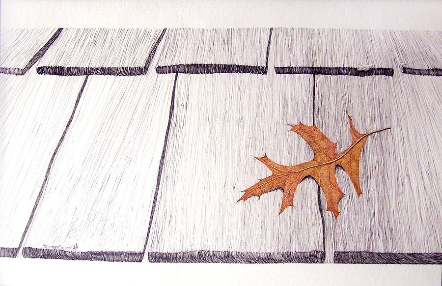 Wood Shingles Drawing - The Loner by A  Robert Malcom