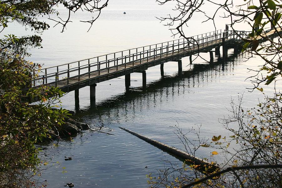 Water Photograph - The Long Dock by Doug Johnson